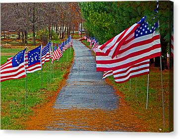 Old Glory Canvas Print by Andy Lawless