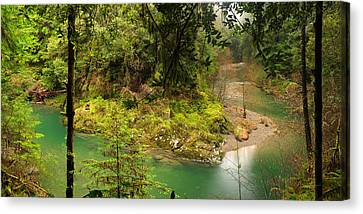 Old Growth Forest And River Canvas Print by Leland D Howard