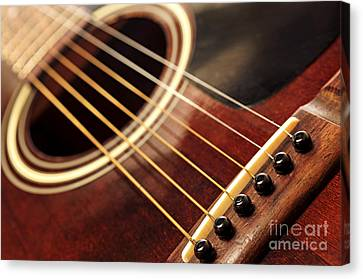 Old Guitar Canvas Print by Elena Elisseeva