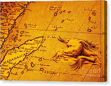 Old Map Of Africa Madagascar With Sea Monster Canvas Print by Colin and Linda McKie