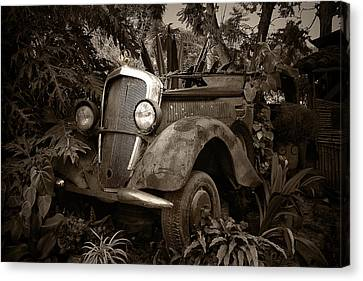 Old Mercedes Canvas Print by Tom Bell