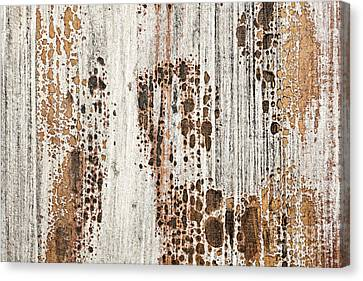 Old Painted Wood Abstract No.2 Canvas Print by Elena Elisseeva
