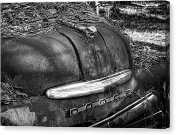 Old Rusty Dodge In Black And White Canvas Print by Greg Mimbs