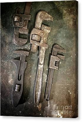 Old Spanners Canvas Print by Carlos Caetano