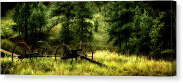 Old Wagon Frame In The Black Hills Canvas Print by Panoramic Images
