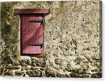 Old Wall And Door Canvas Print by Olivier Le Queinec