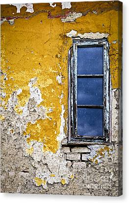 Old Wall In Serbia Canvas Print by Elena Elisseeva