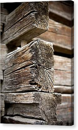 Old Wood Canvas Print by Frank Tschakert