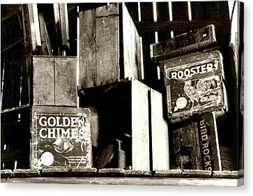 Old Wooden Crates Canvas Print by Heather Allen
