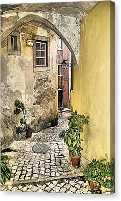 Old World Courtyard Of Europe Canvas Print by David Letts