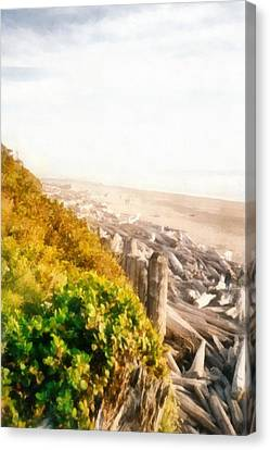 Olympic Peninsula Driftwood Canvas Print by Michelle Calkins