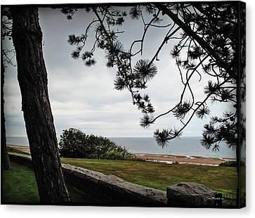 Omaha Beach Under Trees Canvas Print by Joan  Minchak