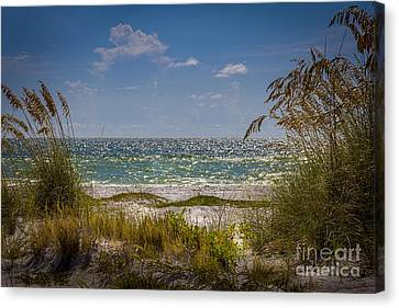 On A Clear Day Canvas Print by Marvin Spates