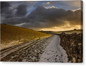 On A Country Walk At Sunset Canvas Print by Chris Fletcher
