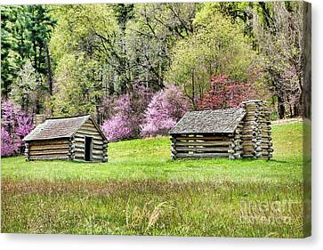 On A Hill At Valley Forge Canvas Print by Olivier Le Queinec