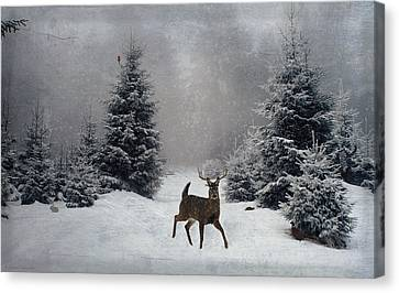 On A Snowy Evening Canvas Print by Lianne Schneider