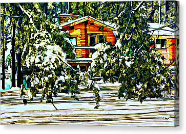 On A Winter Day Canvas Print by Steve Harrington