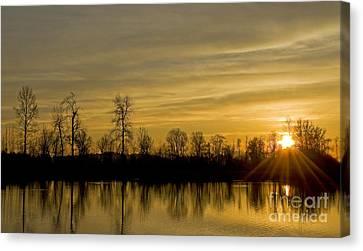 On Golden Pond Canvas Print by Nick  Boren