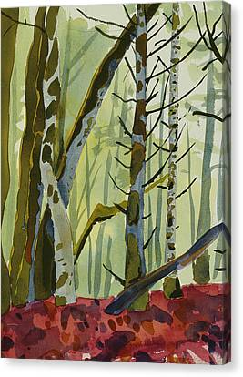 On Ivy Hill Canvas Print by Alexandra Schaefers
