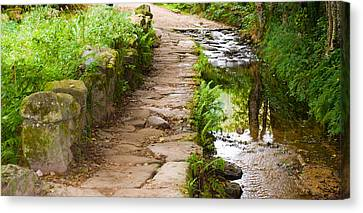 On The Camino A Reflective River Canvas Print by Dave Byrne