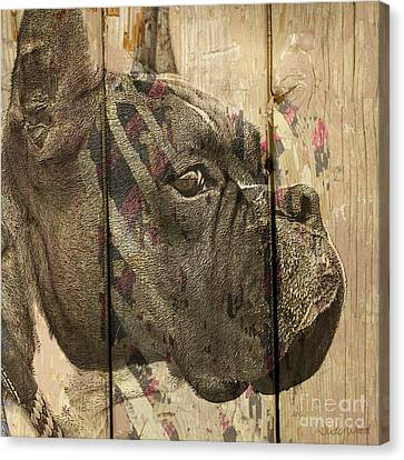 On The Fence Canvas Print by Judy Wood