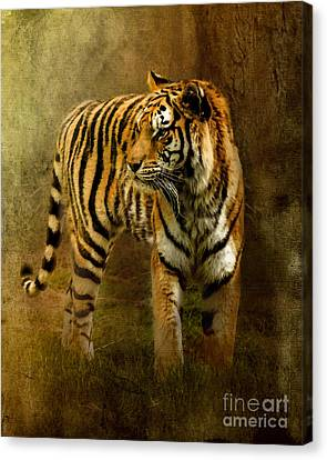 On The Hunt Canvas Print by Betty LaRue