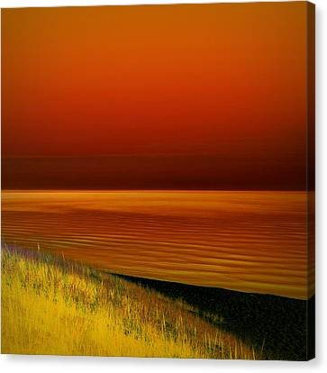 On The Shore Canvas Print by Michelle Calkins