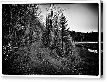 On The Way To Cary Lake Canvas Print by David Patterson