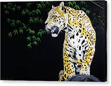 Onca And Bamboo Canvas Print by Chikako Hashimoto Lichnowsky