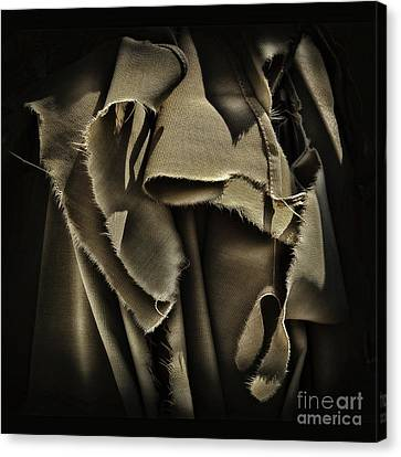 Once In A Torn Dream Canvas Print by Walt Foegelle