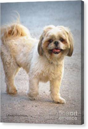 One Happy Little Dog Canvas Print by Lainie Wrightson