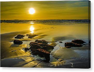 One Oregon Coast Sunset Canvas Print by Puget  Exposure