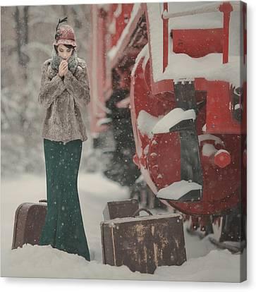 One Winter Story Canvas Print by Anka Zhuravleva