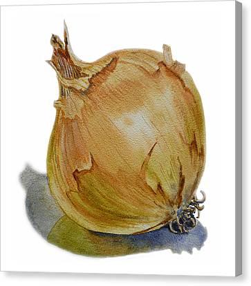 Onion Canvas Print by Irina Sztukowski