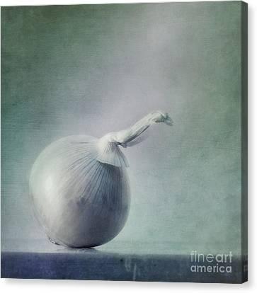 Onion Canvas Print by Priska Wettstein