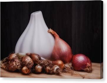 Onions Canvas Print by Tom Mc Nemar