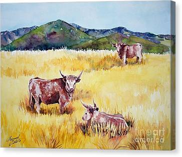 Open Range Patagonia Canvas Print by Summer Celeste