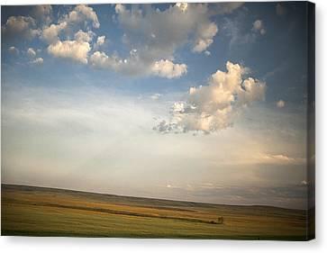 Open Skies Canvas Print by Andrew Soundarajan