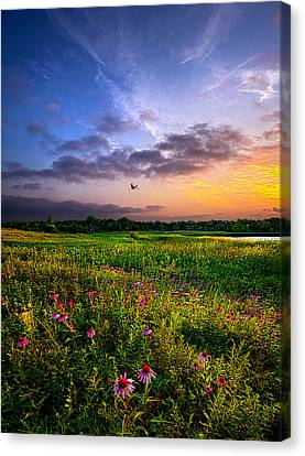 Open Spaces Canvas Print by Phil Koch