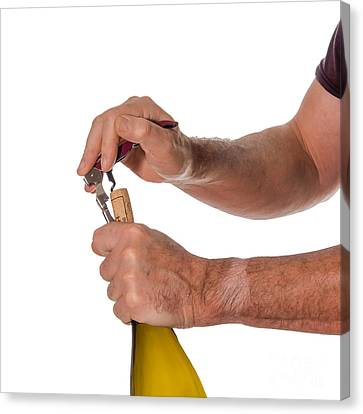 Opening A Bottle Of Wine Canvas Print by Patricia Hofmeester