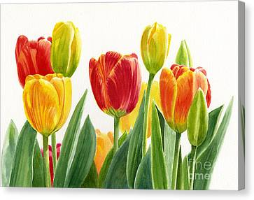 Orange And Yellow Tulips Horizontal Design Canvas Print by Sharon Freeman