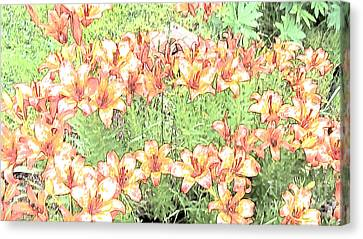 Orange Asiatic Lilies Canvas Print by Beverly Guilliams