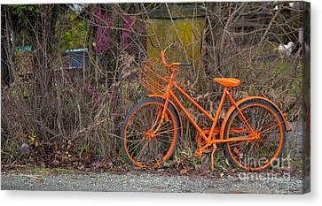 Orange Bike Canvas Print by Graham Foulkes