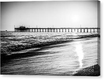 Orange County California Picture Of Balboa Pier  Canvas Print by Paul Velgos
