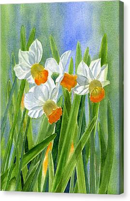 Orange Daffodils With Background Canvas Print by Sharon Freeman