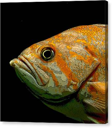 Orange Fish Canvas Print by Art Block Collections