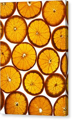 Orange Fresh Canvas Print by Vitaliy Gladkiy