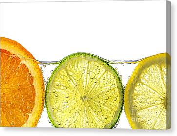 Orange Lemon And Lime Slices In Water Canvas Print by Elena Elisseeva