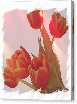 Orange Light Canvas Print by Debra  Miller