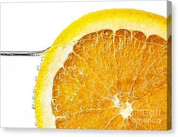 Orange Slice In Water Canvas Print by Elena Elisseeva